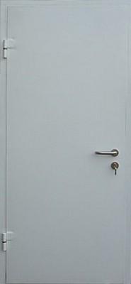 металлические двери окрашенные эконом класса